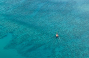 Aerial photo of yellow and blue sailing boat in Waikiki